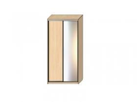 Шкаф - купе Хит 14.15 1 дверь ДСП 1 дверь зеркало 2400х1362х620
